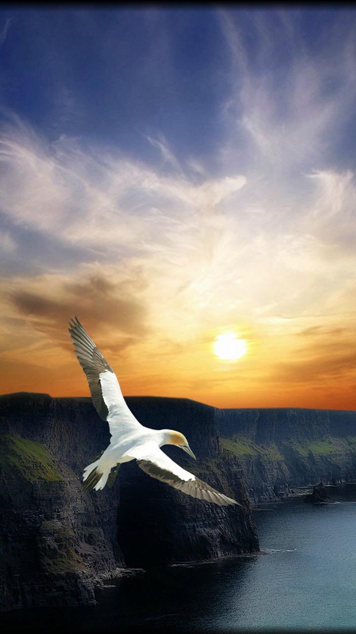 Heavens_Valley-ea3314b6-958a-3bf0-8ad0-03d3e5806133